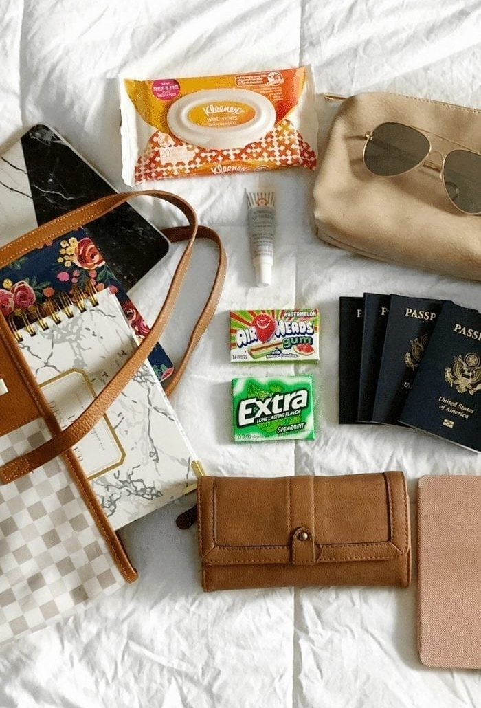 What's Inside My Travel Tote