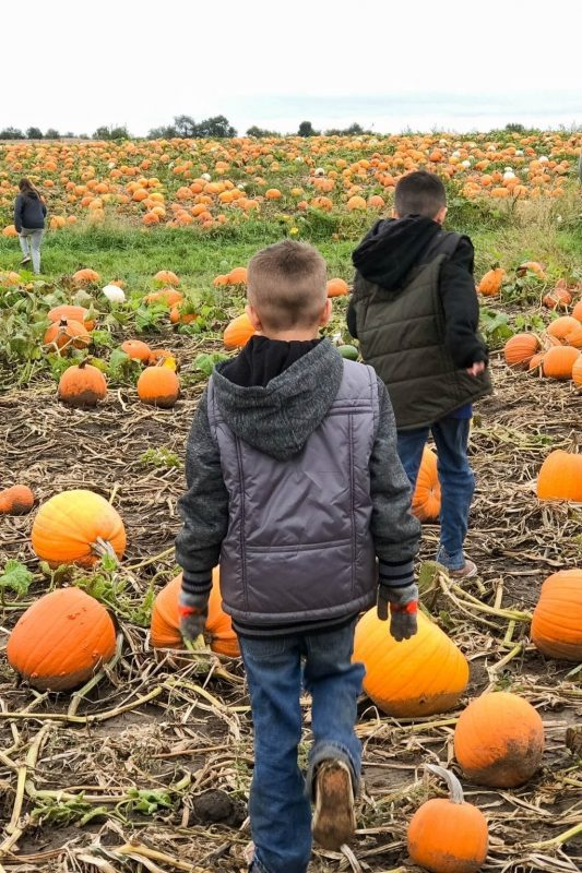 Family Fall Fashion + Activities with Gordmans