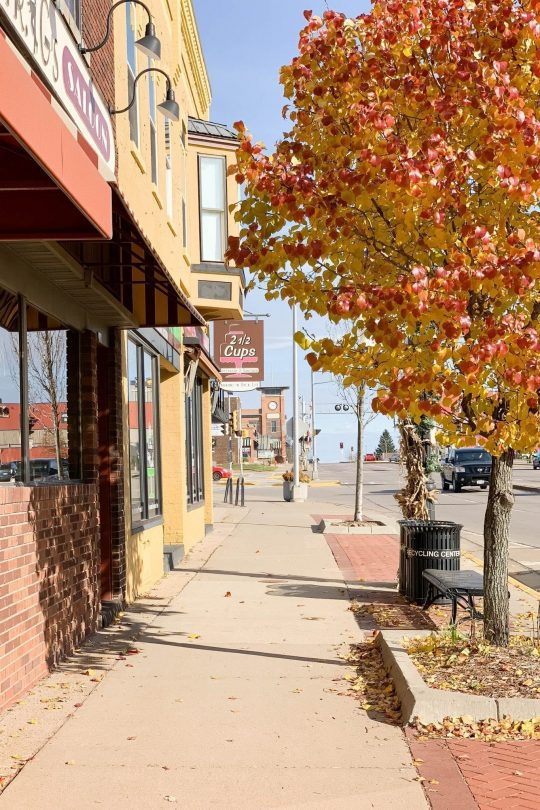 Local Shops to Visit in Marshfield, WI