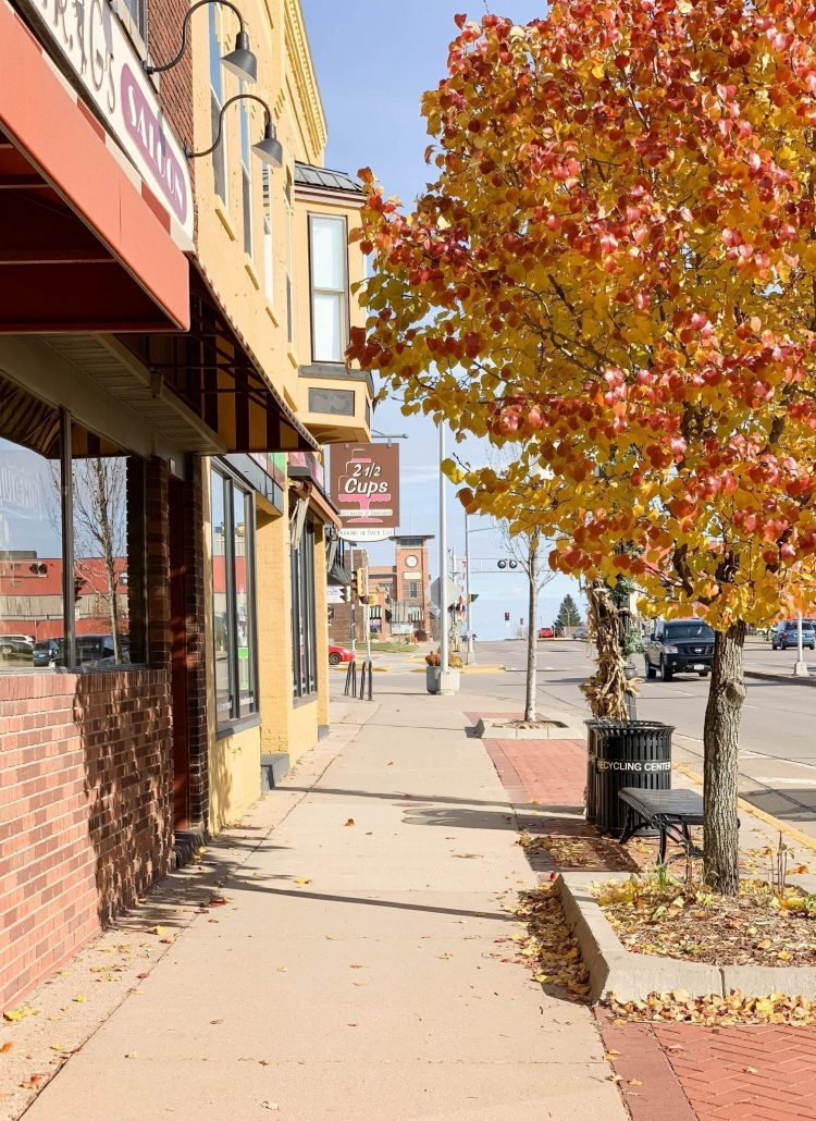 Local Shops to Visit in Marshfield WI