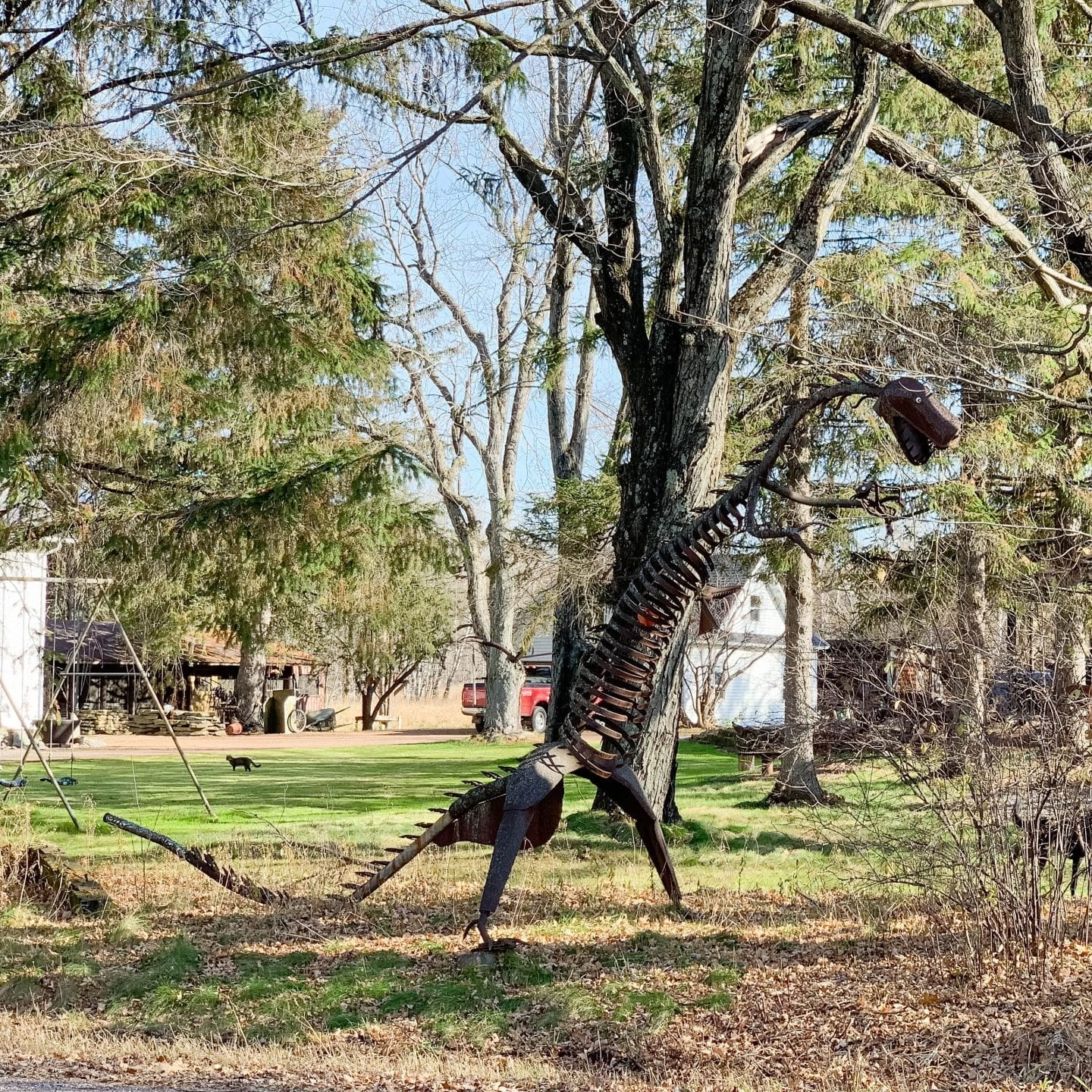 Family Friendly Activities in Marshfield WI