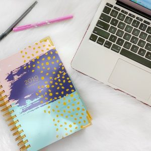2019 Goals PUS Start Planner Review