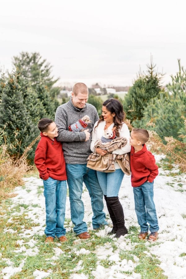 Our Christmas Tree Farm Family Photos