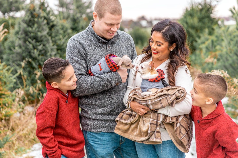 Our Christmas Tree Farm Family Photos
